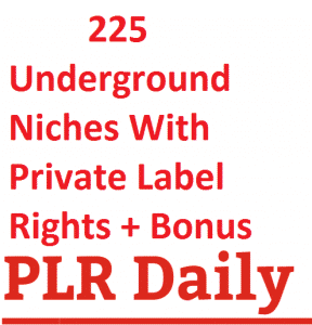 225 Underground Niches With Private Label Rights