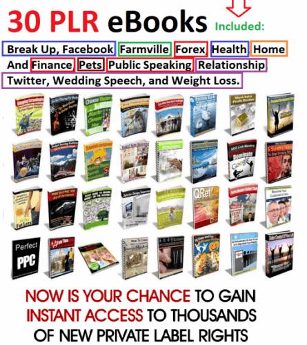 30 PLR eBooks