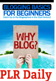Flat-Blogging-Basics