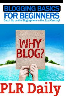 Flat-Blogging-Basics