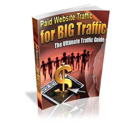 Paid Website Traffic for BIG Traffic