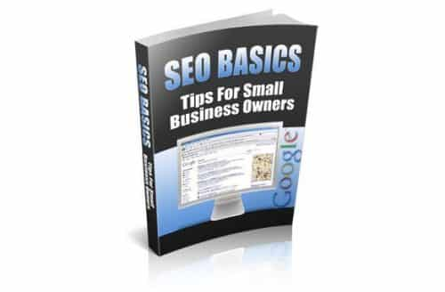 SEO Basics dive into the SEO tips