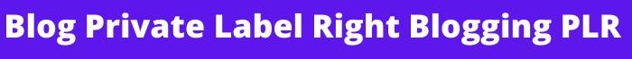 Blog Private Label Right Blogging PLR